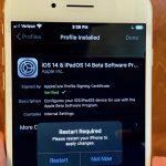 Cómo descargar iOS 14 Beta iPSW o perfil sin una cuenta de desarrollador