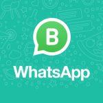 WhatsApp lanza su aplicación empresarial para pymes en India