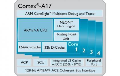 Corteza-A17