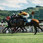 Las mejores aplicaciones para apuestas de carreras de caballos en 2020