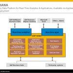 SAP carece de control de seguridad para su gestión de base de datos HANA