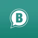 WhatsApp Business beta para Android actualizada de 0.0.120 a 2.18.3: ¿que hay de nuevo?